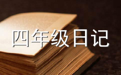 数学日记500字作文